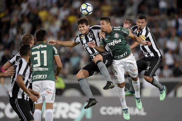 Palmeiras vs Botafogo